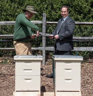 Greenwood beehives_01_blog