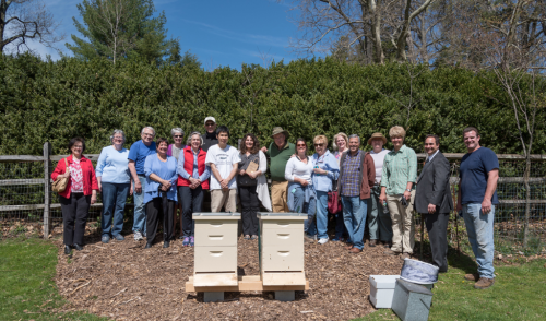 Greenwood beehives_05_blog